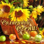 Романтические открытки осень