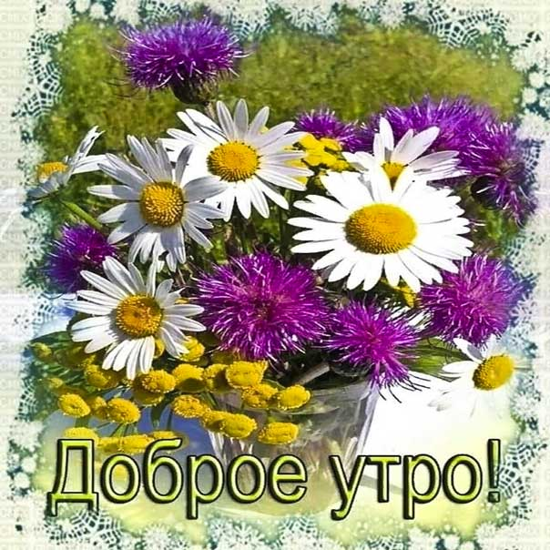 Картинка прекрасного доброго утра. Позитива улыбок, цветы ромашки, текст, красивая надпись, со стихом утро, мигающая, картинки утром, пожелание, картинка.