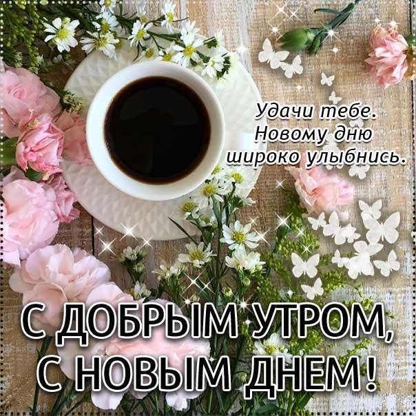 бодрого тебе утра, солнечного утра, чудесных эмоций, замечательного утра, теплого утра, нежного утра, доброе утро чудесного солнечного дня, прекрасное утро, ласкового утра, радостного утра
